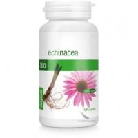 Echinacea Bio Capsules (Rode zonnehoed) 220mg