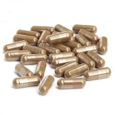 Propolis capsules 120st