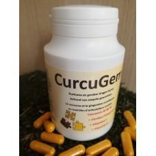 CurcuGem Capsules 595mg (BCM-95)