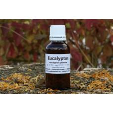 Eucalyptus etherische olie Kruidenweide 30ml
