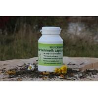 Paardenmelk capsules 60st