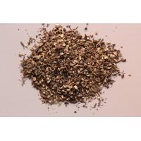 Zilverkaars (Cimicifuga racemosa)